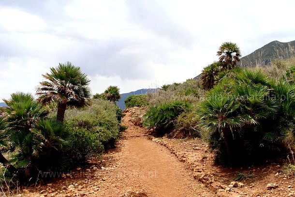 Rezerwat Zingaro
