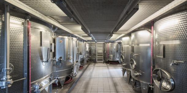fermentazione4L-770x386 (1)