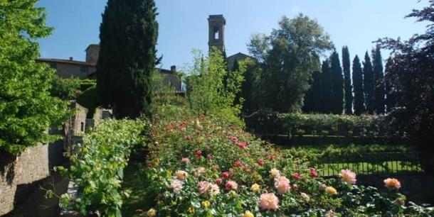 giardino-rose-101