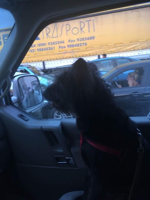w-drodze-do-domu-z-panem-sebastianem