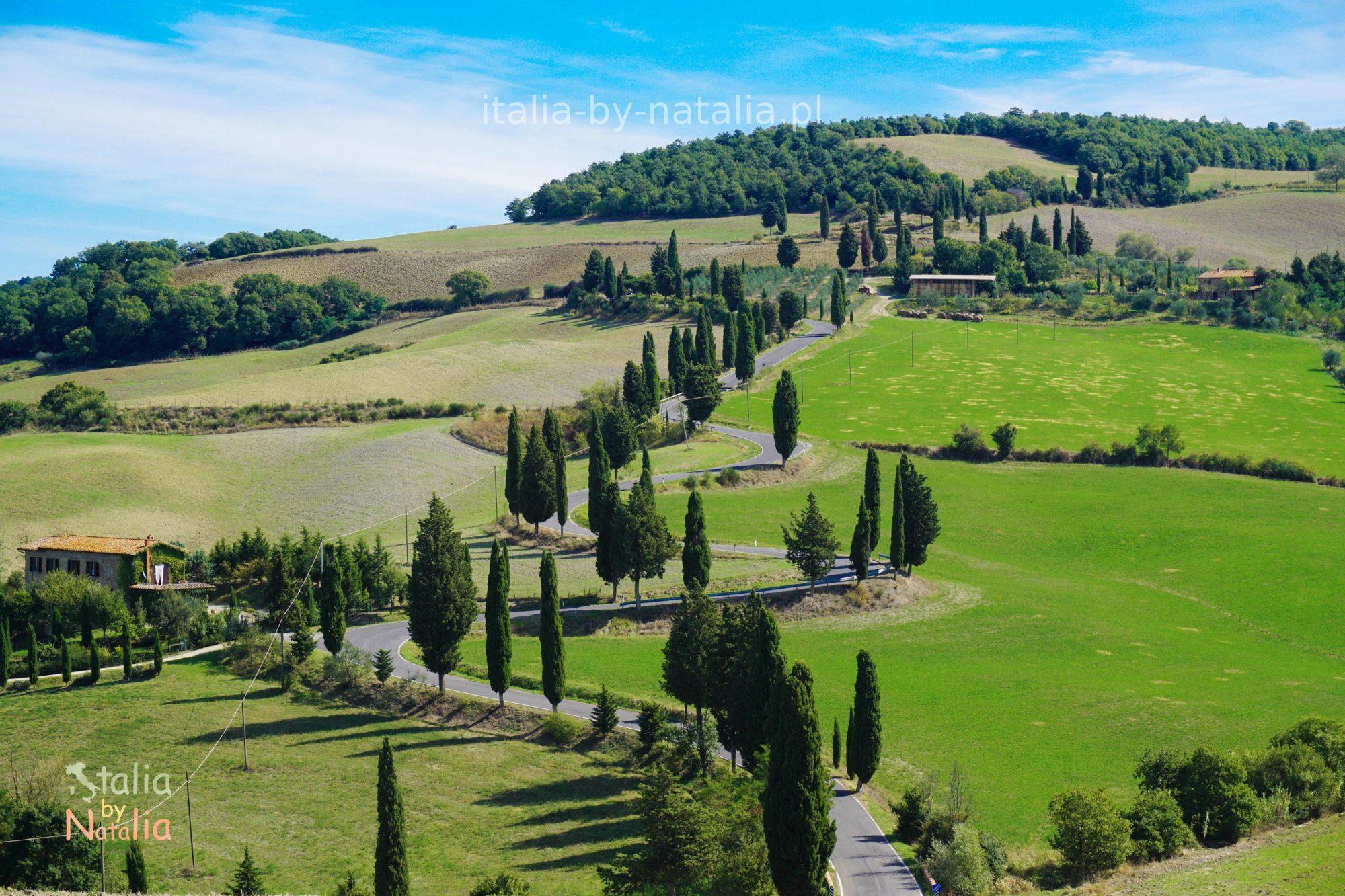 monticchiello cyprysowa droga toskania val d'orcia włochy tuscany italy cypresses road