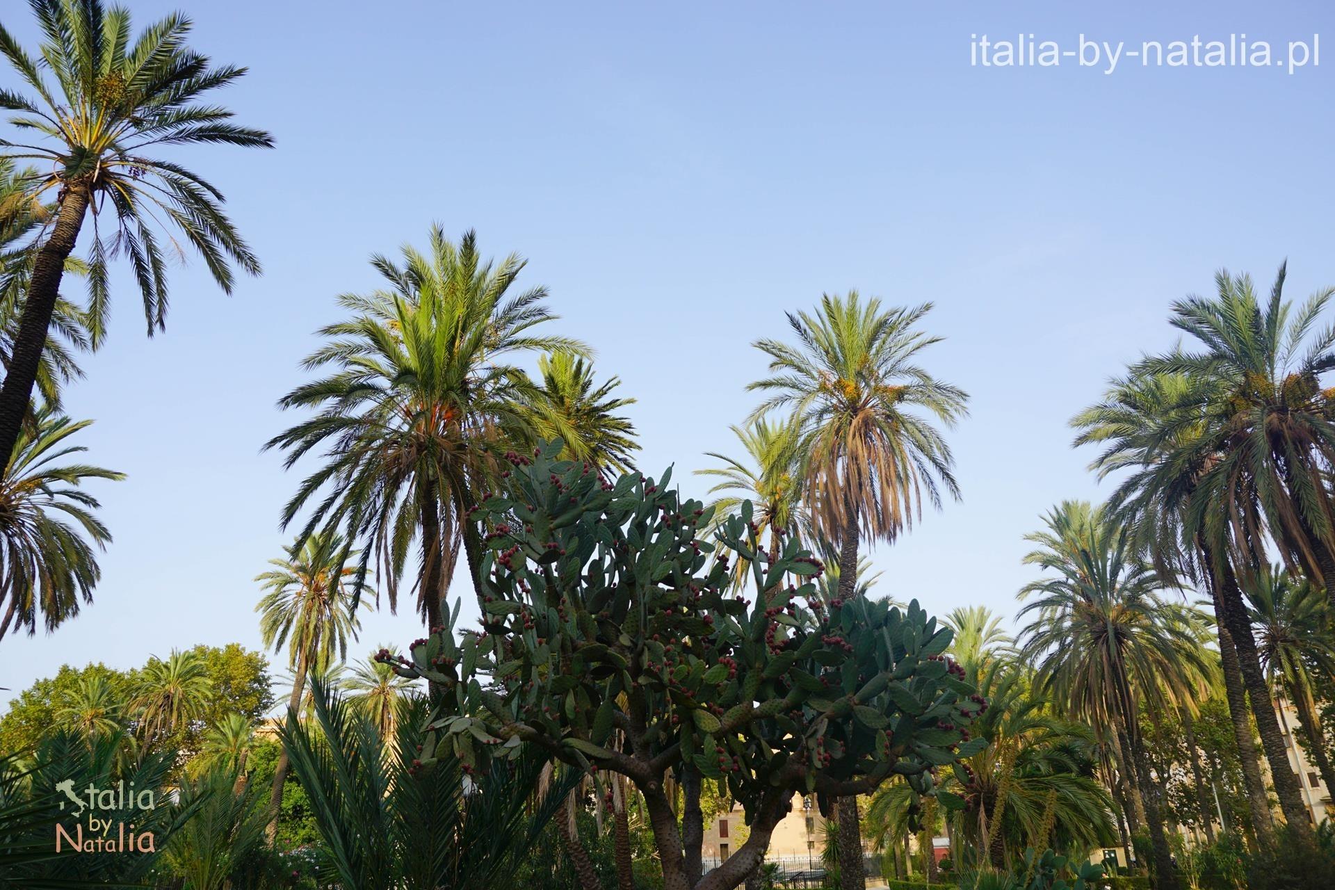 Palermo Villa Bonano