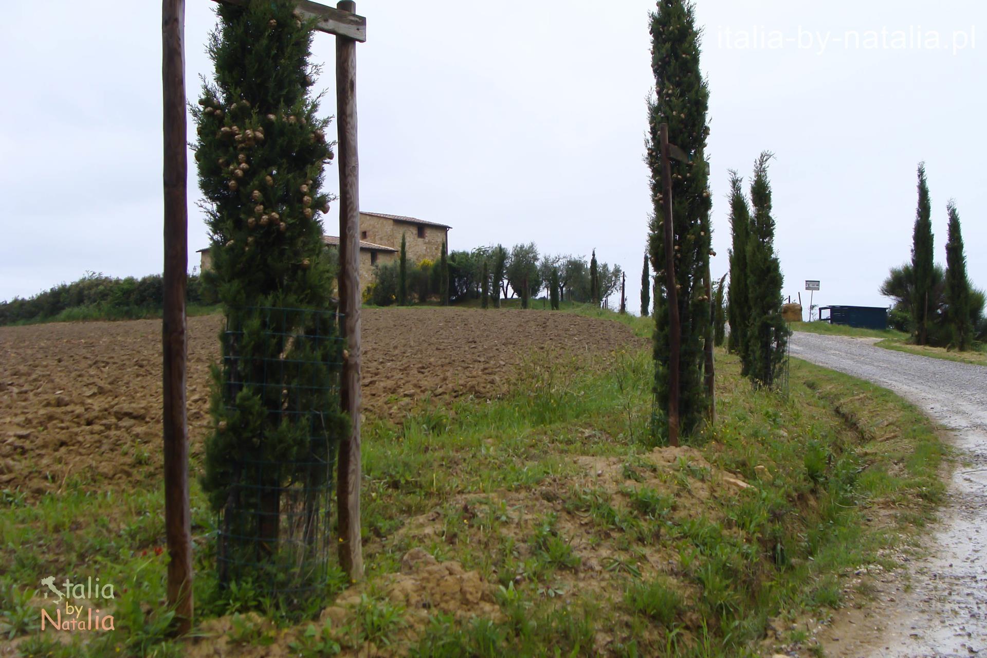 Toskania Pienza Agriturismo Il Macchione Włochy Tuscany Italy