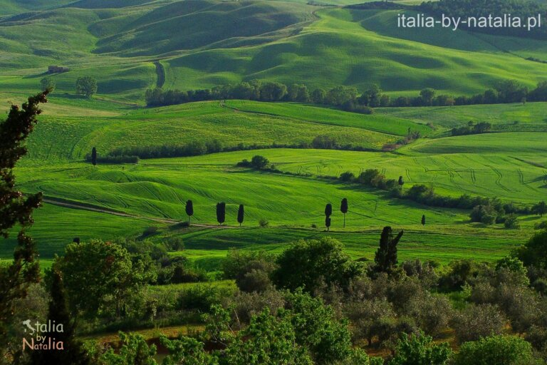 Pienza Toskania widok panorama Terrapille