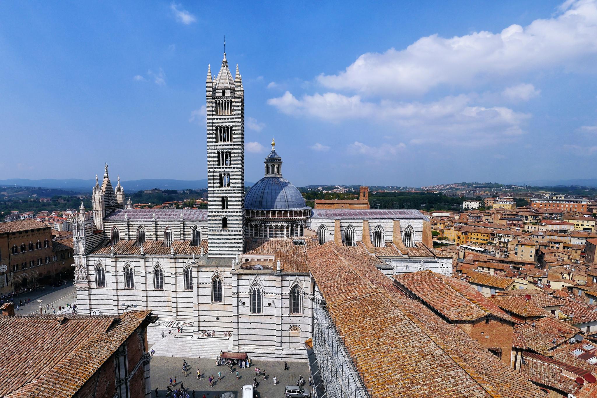 Siena katedra duomo