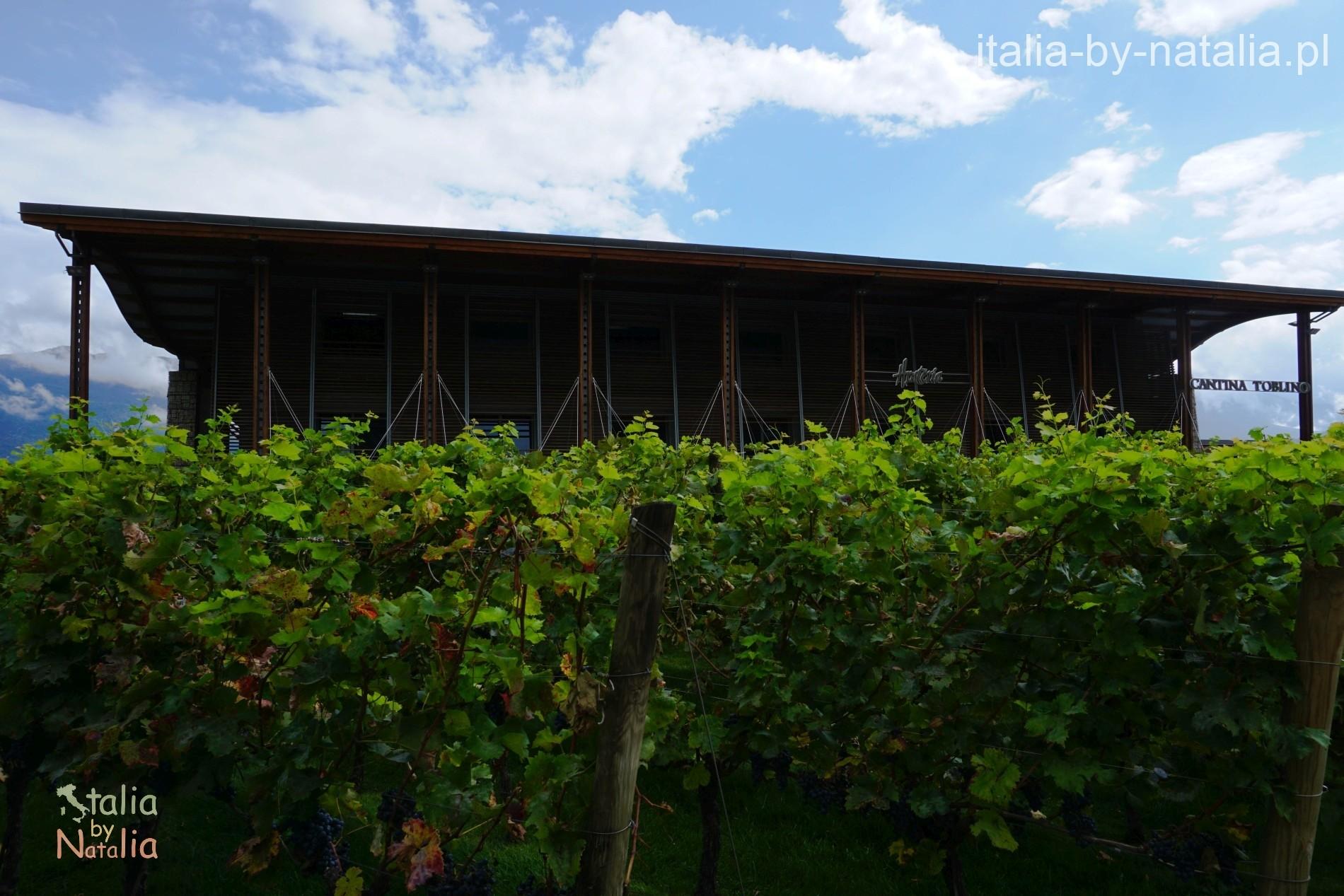 Cantina Hosteria Toblino Sarche di Calavino gdzie zjeść nad Jeziorem Garda