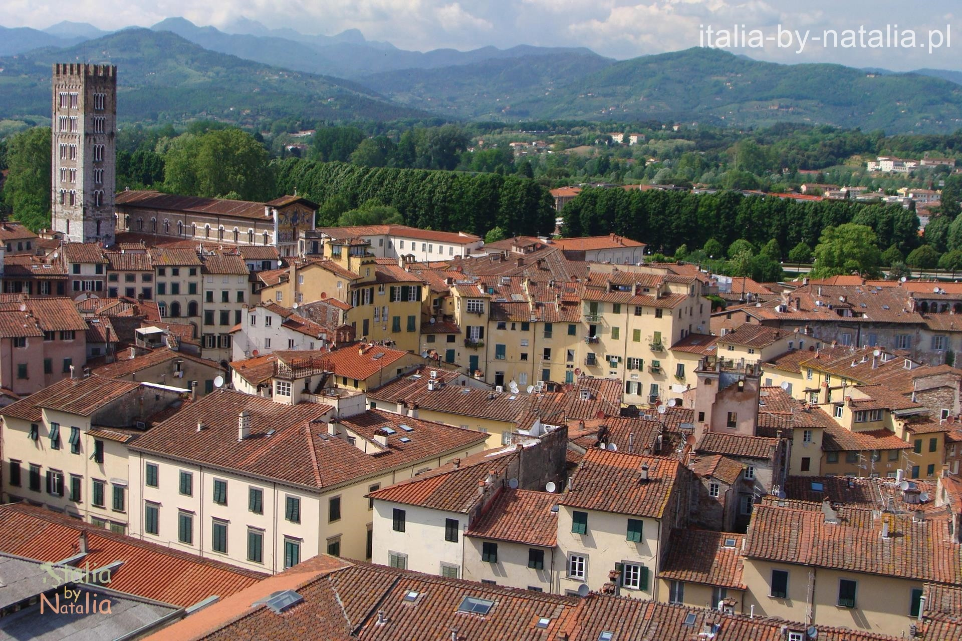 Lucca widok panorama Torre Guinigi