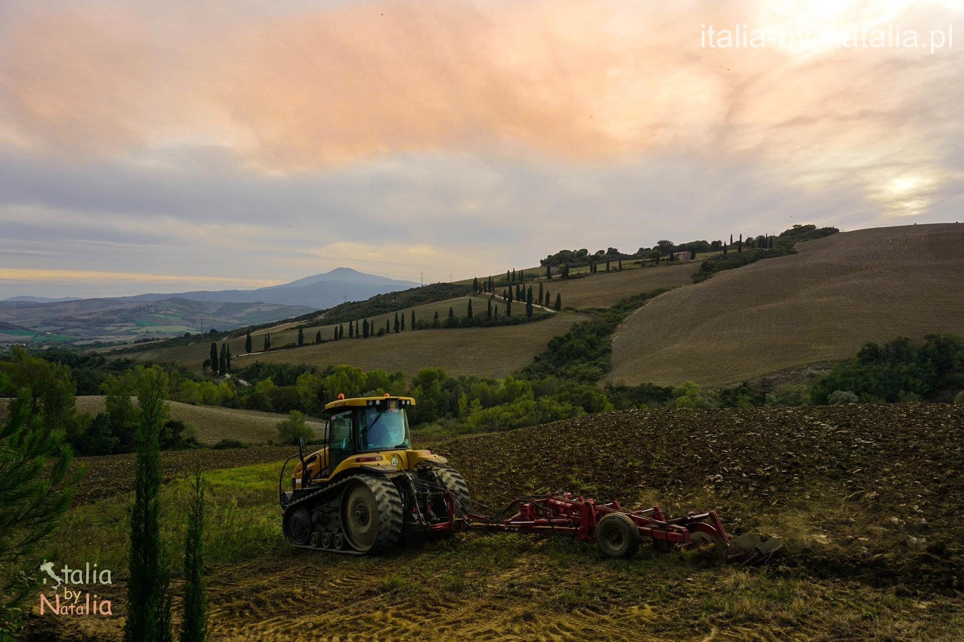 La Foce zawijaniec cyprysowy jesień toskania Val di Orcia cyprysowe drogi toskanii