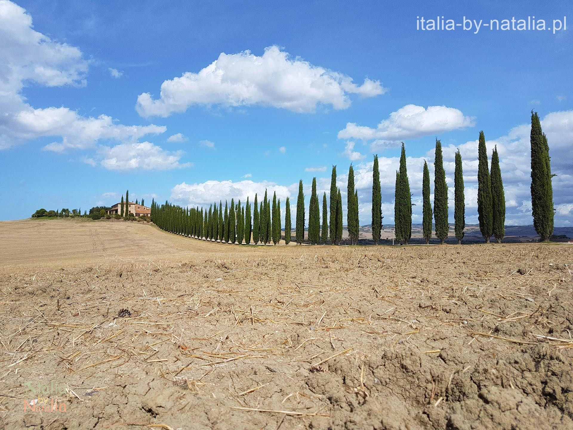 Poggio Colvili punkt widokowy Toskania Val di Orcia cyprysowe drogi toskanii