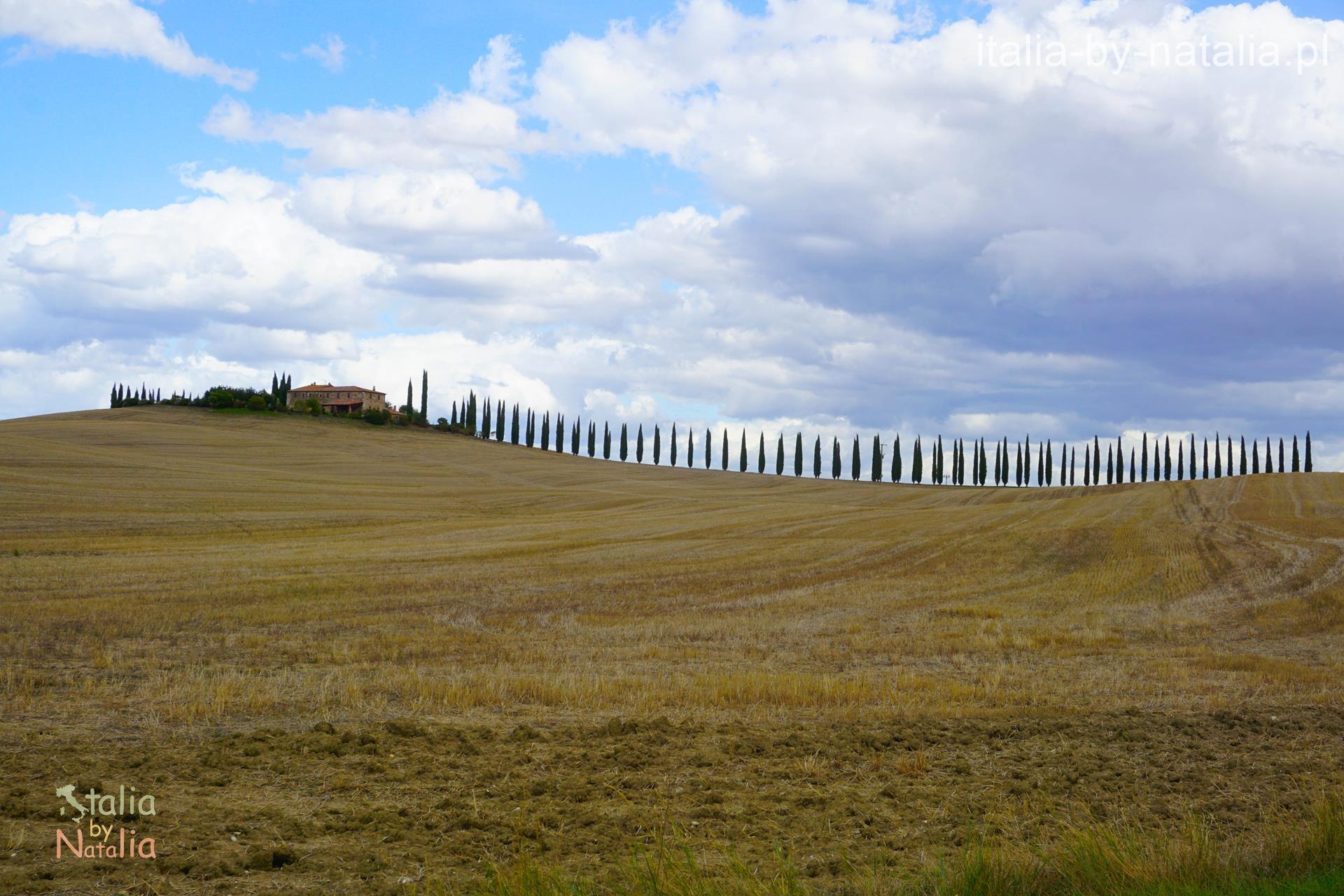 Poggio Colvili punkt widokowy Toskania Val di Orcia