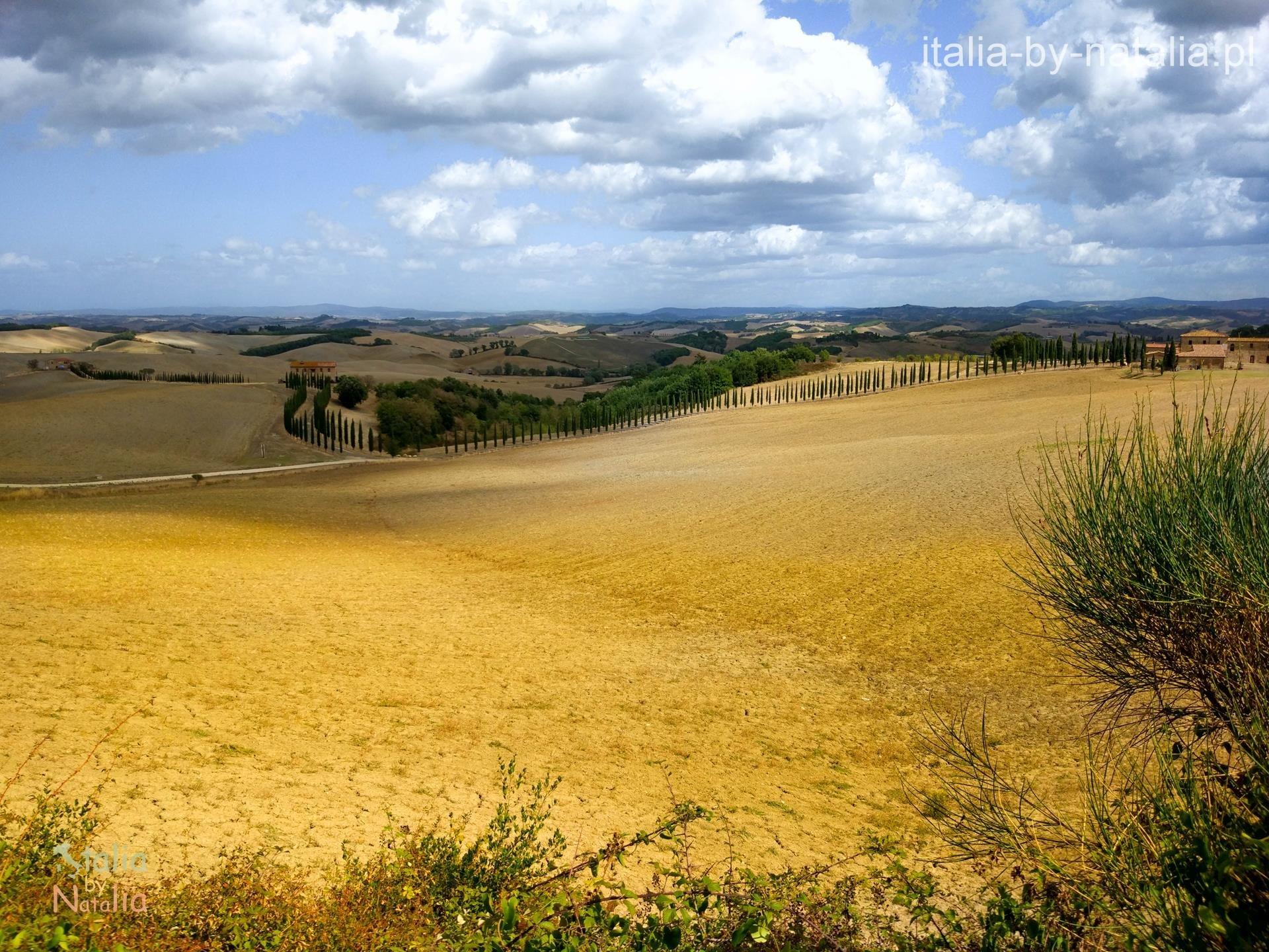 Val di Orcia punkt widokowy jesień cyprysy droga siena palona Toskania jesienią