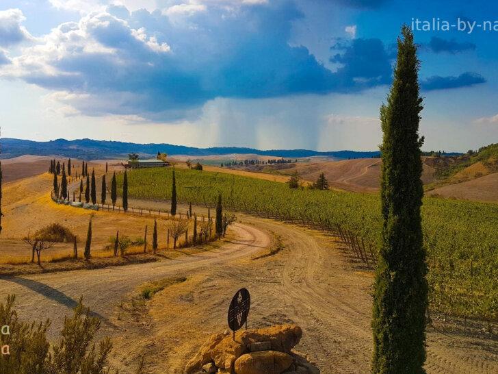 Toskania jesienią wzgórza cyprysy droga winnica