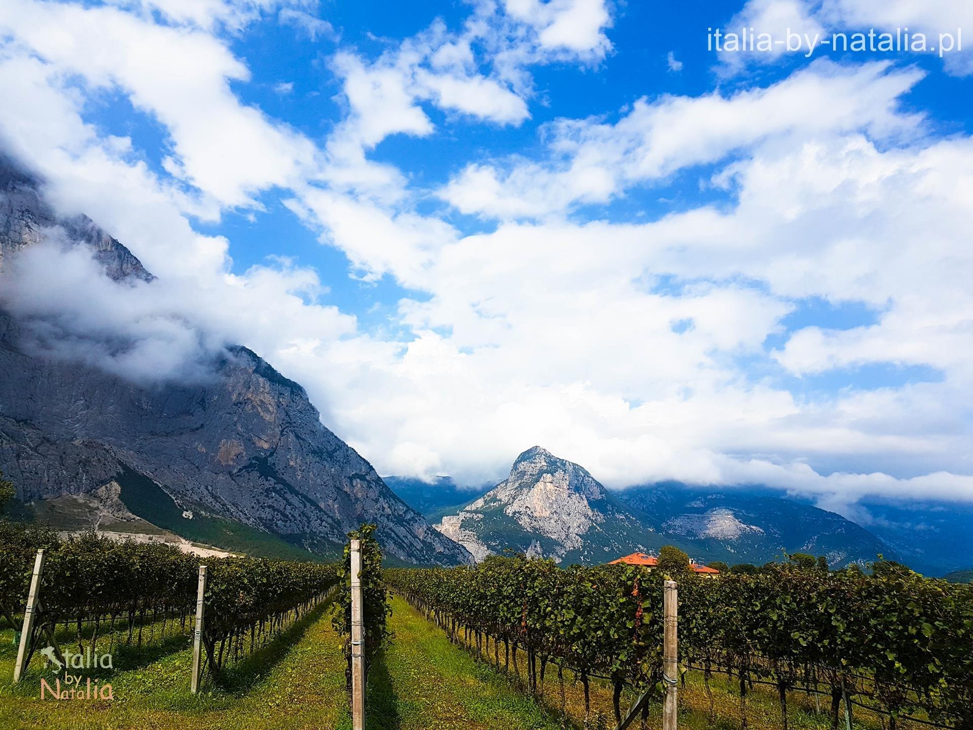 winica Trentino Sarca Riva del Garda Dro Arco góry Velle dei Laghi