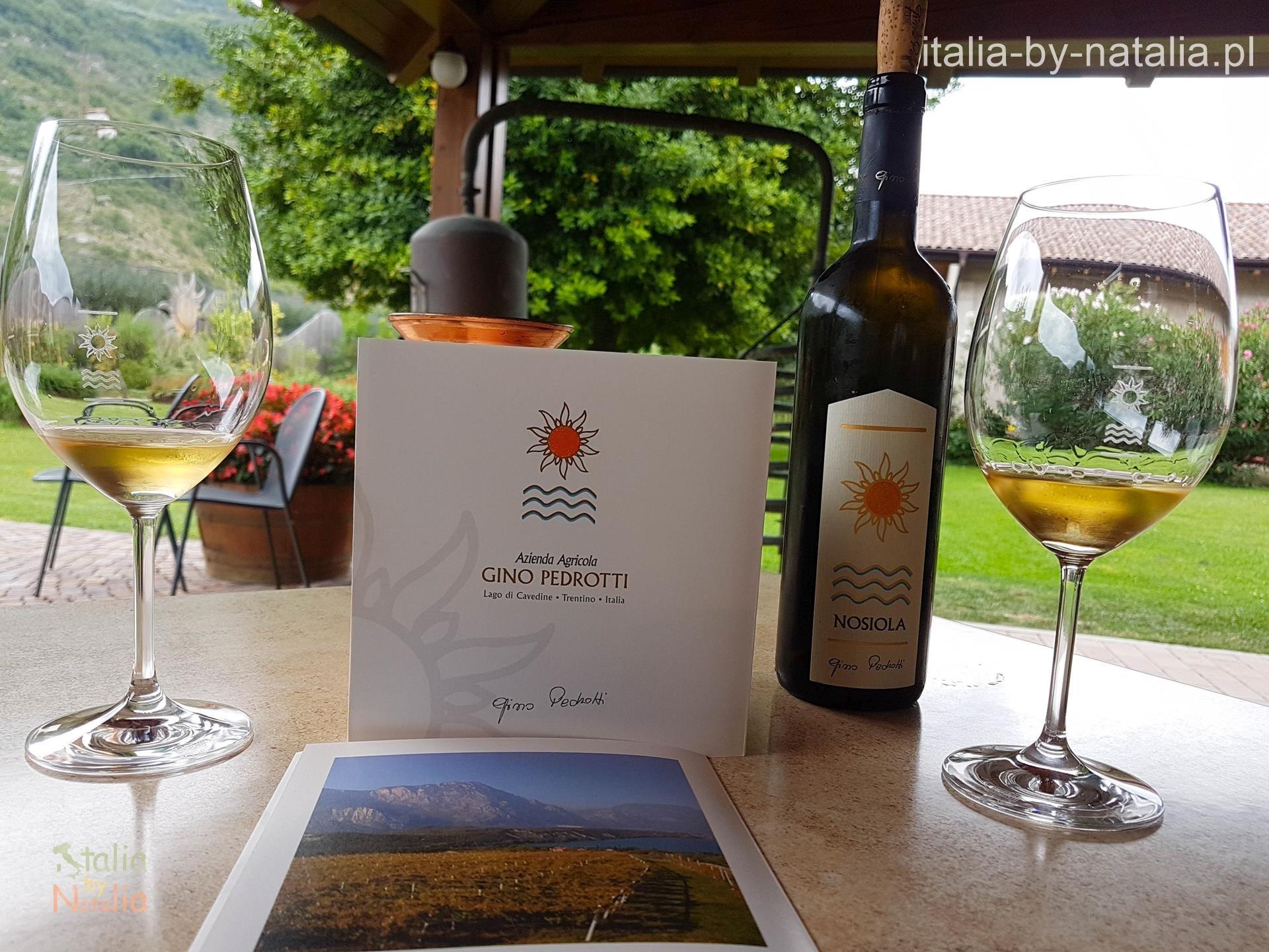 Gino Pedrotti Trentino degustacja wino vino santo nosiola