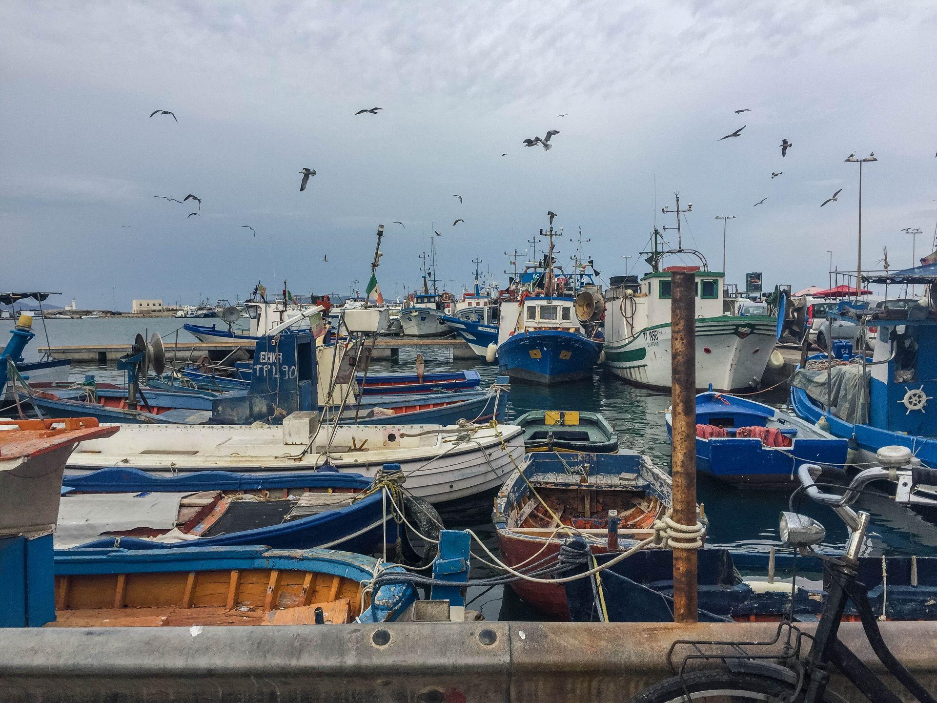 Trapani port łodzie rybackie