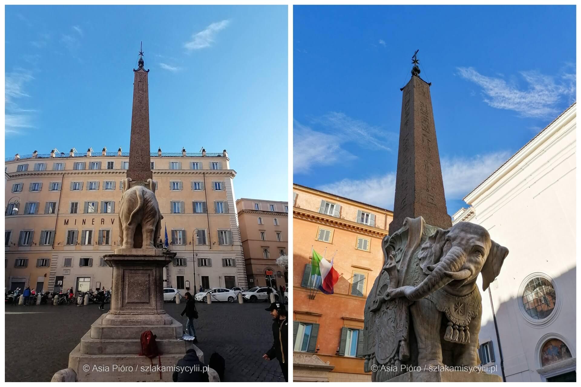 rzym fontanna słonia